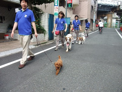 004ichiro.jpg