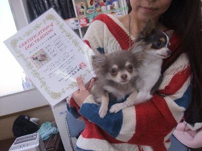 k-mirimoko110412.jpg