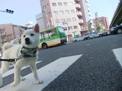 k-ranmaru111219.jpg