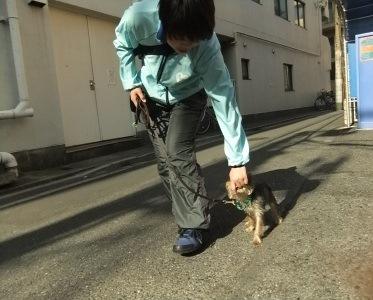 t-haruo0423.jpg