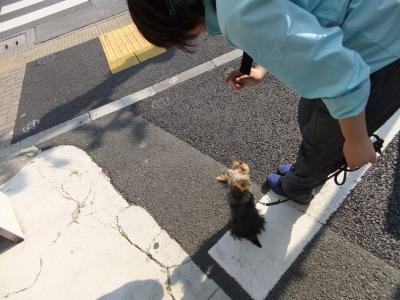 t-haruo0429.jpg