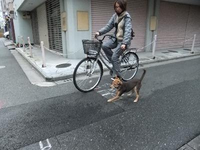t-kuro-i111221.jpg