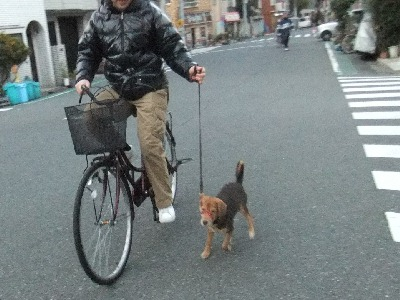 t-kuro-i111223a.jpg