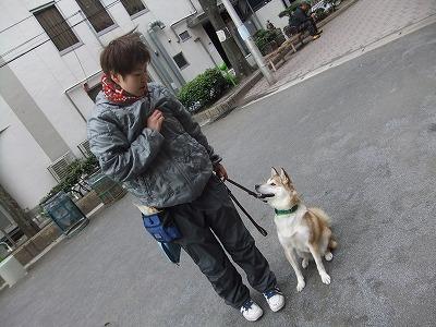 y-mamekoro0314.jpg