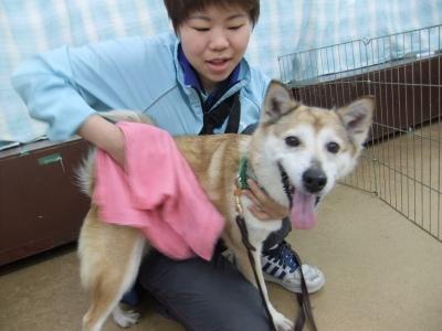 y-mamekoro0329.jpg