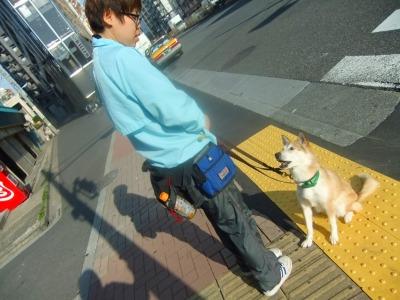 y-mamekoro0331.jpg