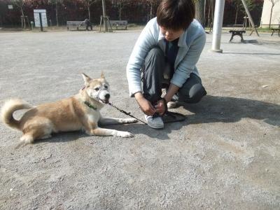 y-mamekoro0419.jpg