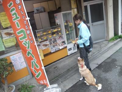 y-mamekoro0506.jpg