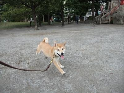 yamato1005.jpg