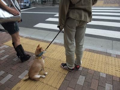 yamato1019.jpg