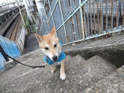 yamato1022.jpg