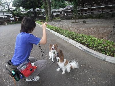 003ichiro.jpg