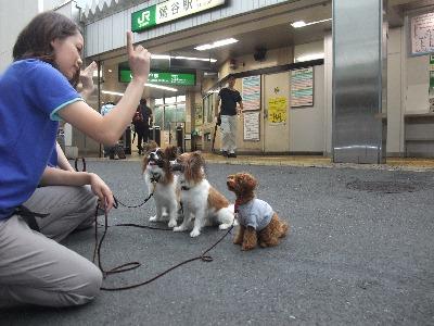 023ichiro.jpg