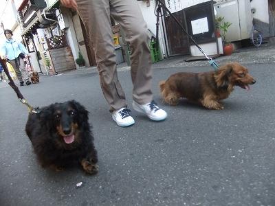 2012_0512blog0080.jpg