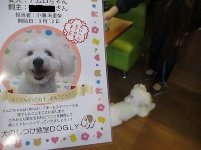 i-amuro0410.jpg