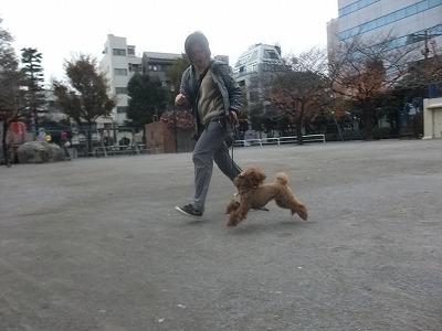n-mozuku111206.jpg