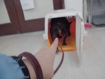 o-annko190111.jpg